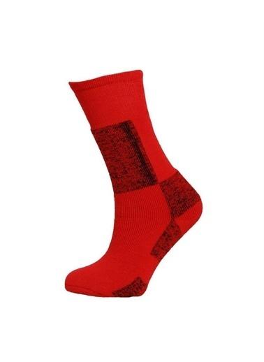 Panthzer Çorap Kırmızı